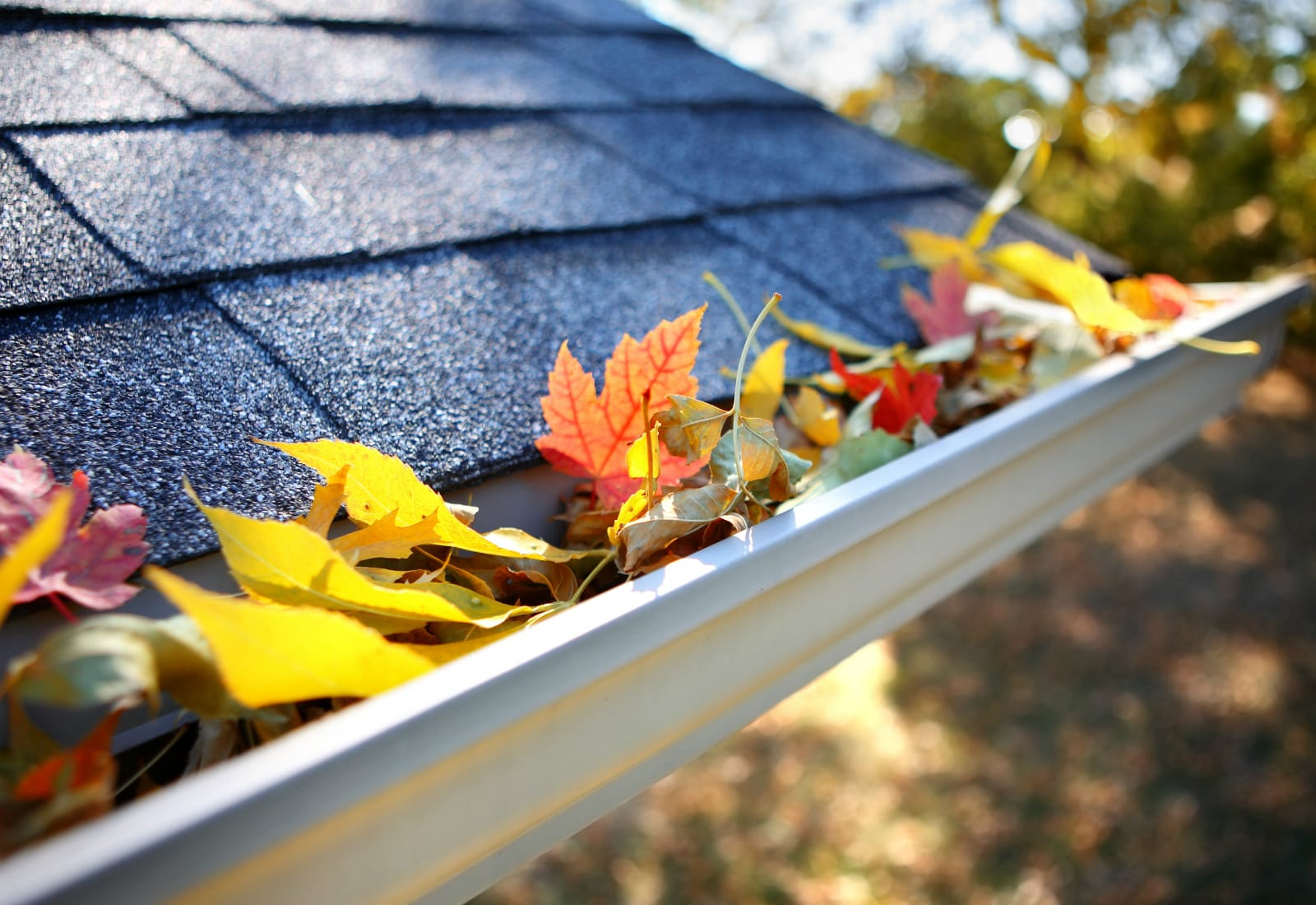 Gutter cleaning Austin TX